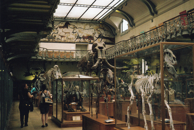 Photo: Alvar Grav  unknown Paris museum