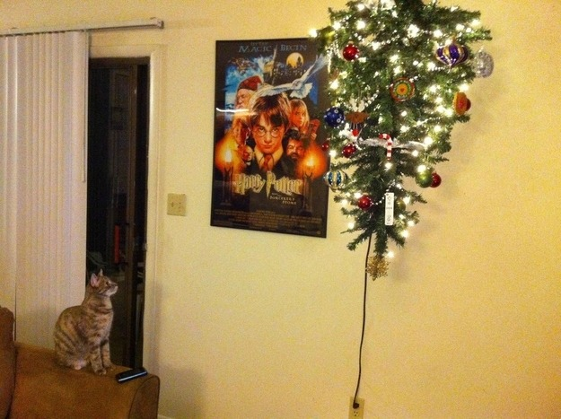 cat proof christmas tree