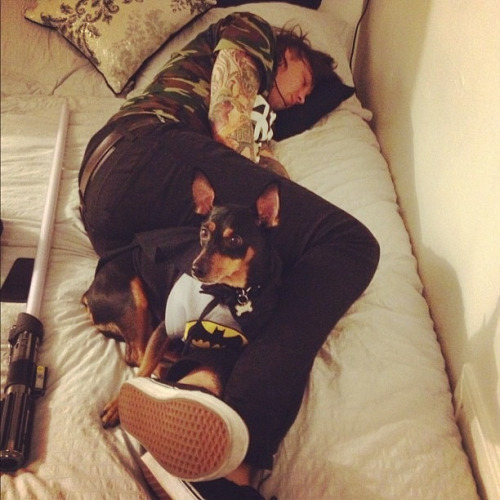 piercethetaco:   Batman keepin me safe while I take a nap.   tony <3 aw