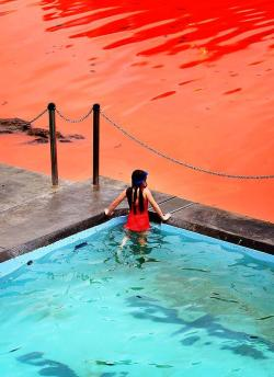 """A form of red algae was spreading across Australia's eastern coast last week"" ""The photo shows a girl checking out the red algal bloom in the water at Clovelly Beach in Sydney.""""Algal blooms such as these occur when unicellular organisms, in this case dinoflagellates called noctiluca scintillans, reproduce quickly under optimal conditions. These blooms typically occur when currents bring cold, nutrient-rich water to the surface."""