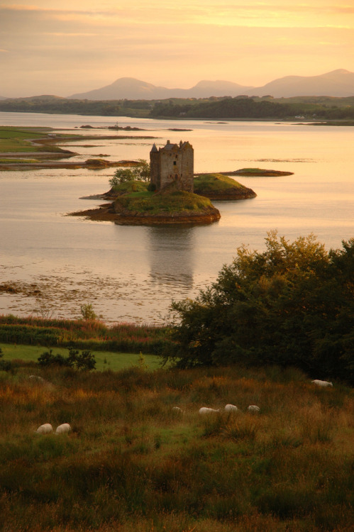allthingseurope:  Stalker Castle, Scotland (by Mino :-))  Just think of the ghosts that roam this castle…Stephanie you need this for a house!