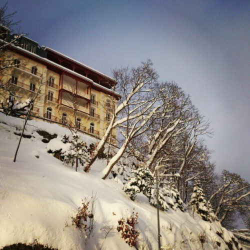 White Xmas I supposed?! #snow #leysin #trees #building #school #shms #uni #white #swiss #Switzerland #Suisse #winter #cold (view outside bel bldg)