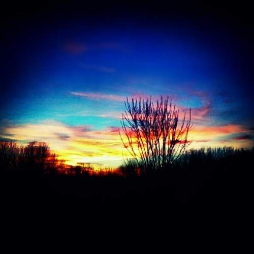 Sunsetttt #pretty #sunset #orange #pink #yellow #blue #sky #clouds #trees #creation #nature #instagood