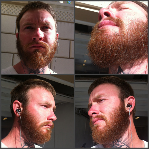 cadillaczac:  more of my beard ..