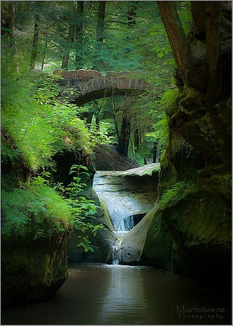 Old Mans Cave Gorge, Ohio. via pinterest
