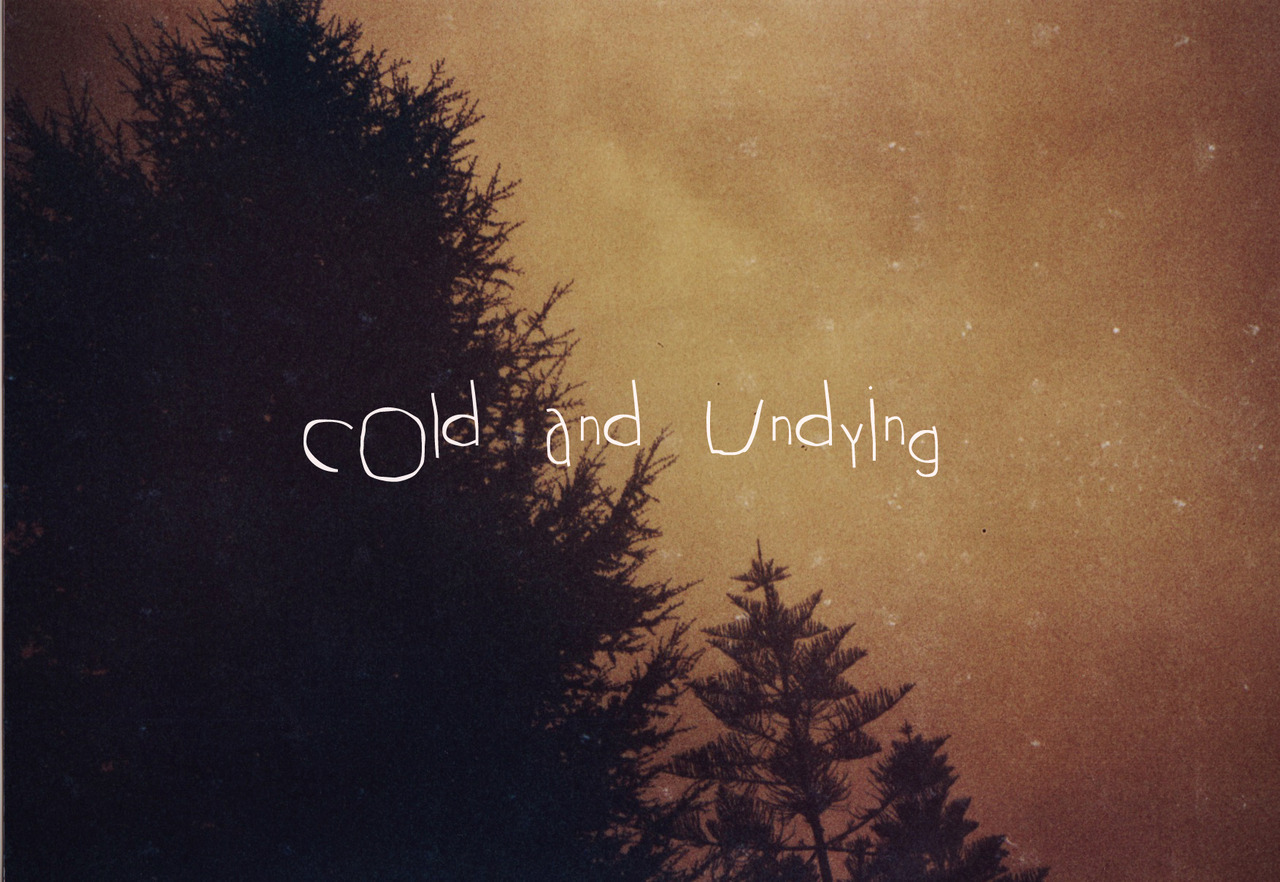 "YOU, ME & THE WINTER: COLD AND UNDYING Project ""MeXpic"" ––––––––––––––– © PaLu (Analogic Lomo Redscale - Holga135)"