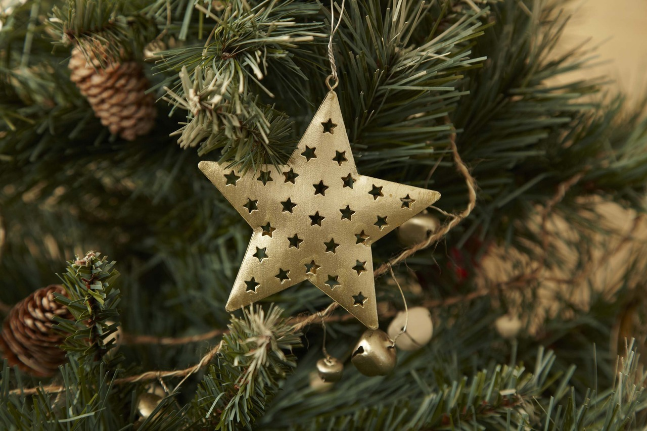 Have you made a wish upon a star? Our silver stars are perfect for hanging on the tree. Also available in cream.