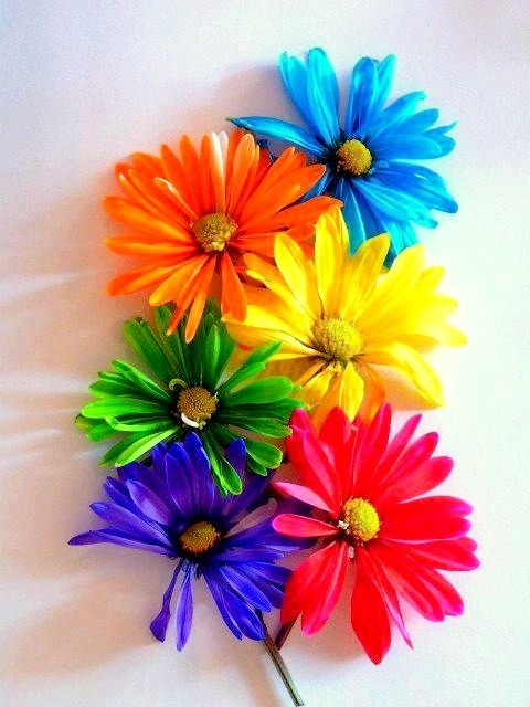 colour-rainbow:   Happy colour blog! :)(: http://colour-rainbow.tumblr.com/