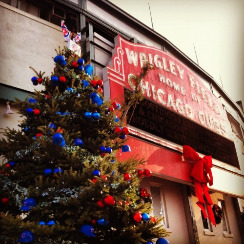 Make sure to visit the Cubs Tree next time you're at Wrigley Field!