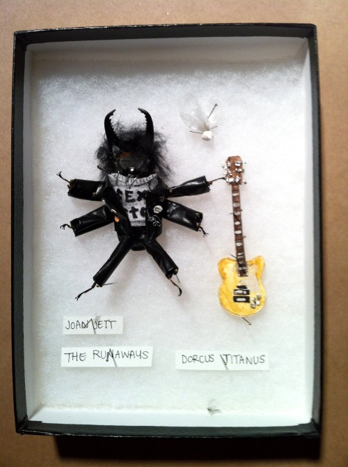 The Runaways - Joan Jett Dried beetles dressed as the various characters played by Kristen Stewart for Muchos Kstew curated by Julia Vickerman Apr 2012