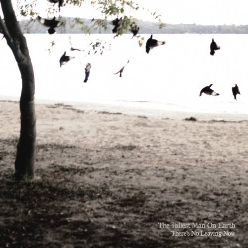 The Tallest Man On Earth - To Just Grow Away
