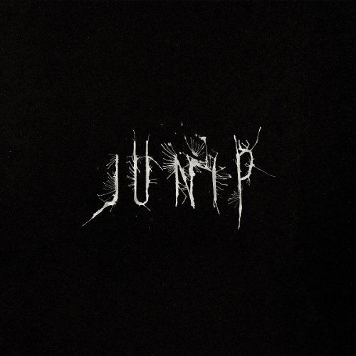 Beginnings - Junip