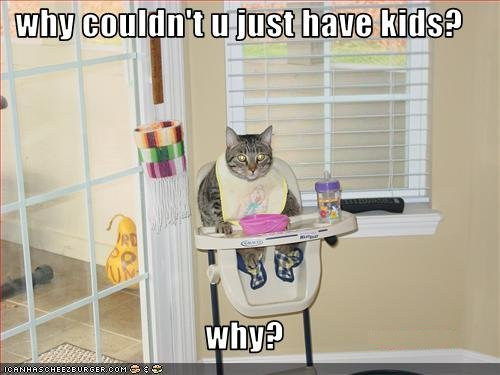 lol cat kids